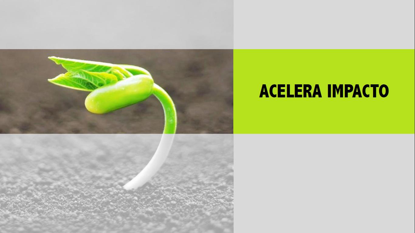acelera 2
